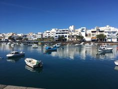 Lanzarote, Arrecife: Great Summer Feeling at the Port