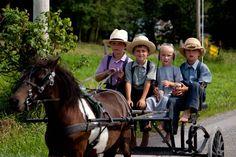Los Amish son uno de los ejemplos más claros y curiosos de vida hermética en pleno siglo XXI. Se distribuyen en más de una veintena de colonias situadas en Estados Unidos y Canadá. Los Amish son descendientes de inmigrantes alemanes y suizos.