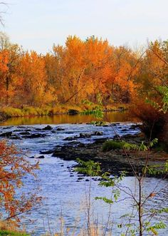 A fall afternoon on the Boise River ~Photos by Christina Holmes