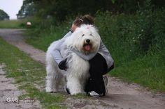 I love my dog...ft Rhea - #RheaenLisa