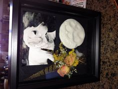 Shadow box for our amazing dog who passed away.