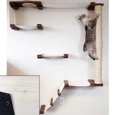 Cat Climbing Shelves, Cat Climbing Wall, Cool Cat Trees, Diy Cat Tree, Diy Cat Shelves, Cat Tree Plans, Mod Wall, Cat Wall Furniture, Painted Furniture