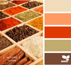 tan orange red green brown. i could decorate with spices . . . oh my.