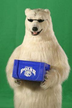 Oso de Polar                                                                                                                                                                                 Más