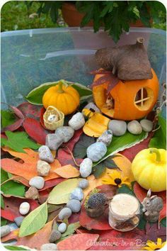 Autumn Sensory Bin for Children: Building a Small World with Carved Pumpkins, Pine Cones, and Leaves -- one of the cutest ideas for outdoor sensory play! Autumn Art, Autumn Theme, Easy Fall Crafts, Crafts For Kids, Fall Pumpkins, Carved Pumpkins, Nursery Activities, Autumn Eyfs Activities, Small World Play