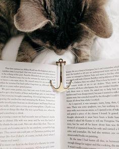 Chat - Livre / Cat - Book