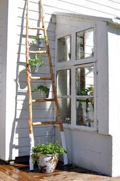 ladder to hang plants <3 love the dipped feet