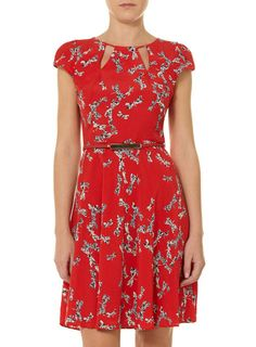 Dorothy Perkins Billie and Blossom Red dragonfly dress