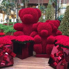Instagram media by the_diamonds_girl - GIANT RED ROSE TEDDY BEARS???? Can only be the genius that is @jeffleatham !! I love it!!! The arrangement is at @iguatemisp in Brazil, and is without doubt one of the most beautiful ever!!!!! PARABENS!!! ❤️❤️❤️❤️❤️❤️❤️❤️❤️❤️❤️❤️❤️❤️❤️❤️