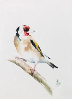Andrzej Rabiega -  European Goldfinch, Watercolour