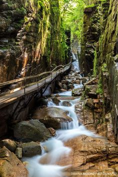 The Flume Photograph - The Flume Gorge Lincoln New Hampshire 1 by Dawna Moore Photography Dream Vacations, Vacation Spots, Cool Places To Visit, Places To Travel, Travel Destinations, Lincoln New Hampshire, Flume Gorge, Nature Photography, Travel Photography