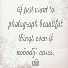 I want to photograph beautiful things