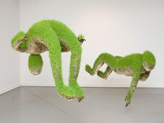 Organic sculptures made of soil and wheat grass seeds.