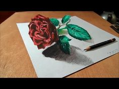 Artistic Drawing Rose on Paper, 3D Illusion - YouTube                                                                                                                                                                                 More