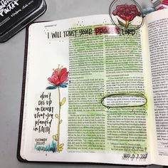 """T R U S T • T H E • P R O C E S S: """"While the earth remains, seedtime and harvest, cold and heat, summer and winter, day and night, shall not cease."""" Genesis 8:22 ESV#biblejournaling #illustratedfaith #dayspring #bellablvd #illustrateyourfaith #inhispresence #biblejournalingcommunity #livecreatively #createdtocreate #emilysbiblejournal #biblejournalingatTFC #wecolorinourbible"""
