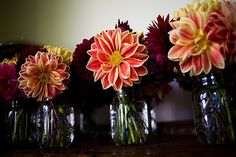 dahlia centerpiece | dahlia centerpieces in mason jars | Flickr - Photo Sharing!