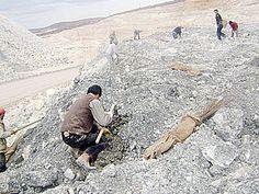 Türkiye'deki Bor Madenlerinden Elde Edilen Kazanç Miktarı
