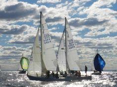 J24 Australia - J24 States 2015 Day 1 (176)