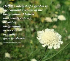 Organic gardening is the exact same as regular gardening except that no synthetic fertilizers or pesticides are used. Organic gardening also r Garden Poems, Garden Quotes, Garden Art, Garden Club, Journal Writing Prompts, Journal Quotes, Gardening Memes, Gardening Tips, Daily Inspiration Quotes