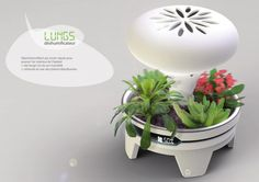 A tray is designed to accommodate plants and earth bauxite, and if you ad some water, the acid soil and electrodes included in the tray works as a natural battery. The energy created feeds a cooling c...