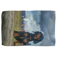 Old Faithful Hand Towel - dog puppy dogs doggy pup hound love pet best friend