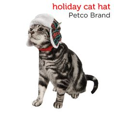 Liven up your cat's holiday with this trapper hat from Petco's Holiday Gift Guide.