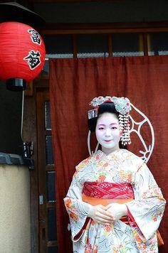 Tomitsuyu as minarai of Gion Higashi