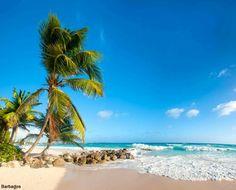 Your Barbados vacation forecast: sunny skies and warm water. barretttravel.globaltravel.com pamelabarrett22@gmail.com