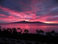 Tahiti view of Moorea sunrise. Beautiful Sites, Beautiful Images, Vacation Places, Dream Vacations, Moorea Tahiti, Cool Pictures, Cool Photos, French Polynesia, South Pacific