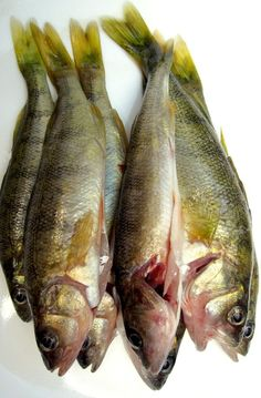 1000 images about omega 3 lowers triglycerides on for Fish oil to lower triglycerides
