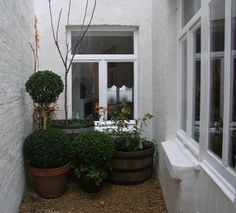 a small terrace decorated with garden pots and wooden barrels - All About Balcony Small Terrace, Terrace Garden, Garden Pots, Outdoor Spaces, Outdoor Living, Belgian Pearls, Balcony Flowers, White Rooms, Dream Garden