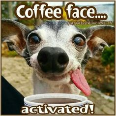 Are you searching for ideas for good morning funny?Check this out for cool good morning funny inspiration. These amuzing pictures will make you enjoy. Happy Coffee, Coffee Talk, Coffee Is Life, I Love Coffee, My Coffee, Coffee Drinks, Coffee Beans, Morning Coffee, Coffee Pics
