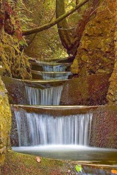 Endless Waterfalls, Cummins Creek Wilderness, Oregon..