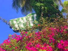 Cadet Hotel is an oasis of charm and elegance amid trendy boutique hotels on Miami Beach!