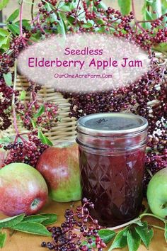 What do you do when you have a bumper crop of apples and it's a banner year for wild elderberries? Make Seedless Elderberry Apple Jam! Delicious!