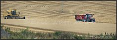 https://flic.kr/p/Lrcv5j | 30-08-2016 Aberdeenshire Scotland | 2016 Harvest been…