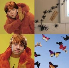 I guess he's never seen miracles ladybug Always Harry Potter, Harry Potter Jokes, Harry Potter Universal, Harry Potter Fandom, Albus Dumbledore, Fantastic Beasts And Where, Drarry, Ron Weasley, Hogwarts