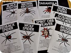 EEKKK!!! Spiders!!!