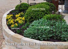 Charmant Central Texas Gardens As Seen In Texas Gardener Magazine Oversized Pots And  Planters For Texas Gardens