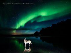 Aurora Borealis - Runolfur Hauksson