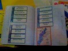 From Dinah Zike's Notebook Foldables book