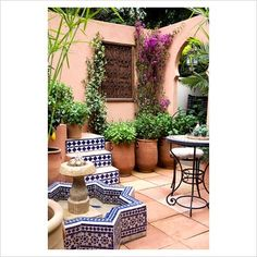 GAP Photos - Garden & Plant Picture Library - Moroccan courtyard with Bouganinvillea, terracotta pots with Cyperus papyrus and various types of mint. Garden: SPANA's Courtyard Refuge, Design: Chris O'Donoghue, Sponsor: Society for the Protection of Animals Abroad - GAP Photos - Specialising in horticultural photography