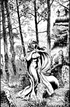 The Countess by dynapop on DeviantArt Artwork Images, Cool Artwork, Coloring Book Art, Colouring, Sword And Sorcery, Black White Art, Black And White Illustration, Ink Pen Drawings, Illustrations And Posters