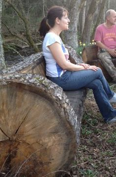 tree trunk bench - I want this, but from already downed wood of course.