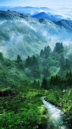 Nature Mist Mountain Wood Forest River Landscape iPhone 6 plus wallpaper Image Nature, All Nature, Amazing Nature, Amazing Art, Green Nature, Green Earth, Beauty Of Nature, Nature Source, Spring Nature