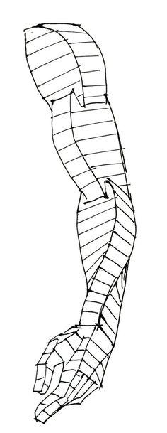 腕の流れの単純化 これを考えるようになってから、空間の中で人体を描くのがだいぶ楽になった。pic.twitter.com/k89ShWrE0k