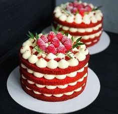 mahnaz decorating cakeis