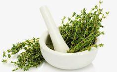 Vous saviez déjà que le thym est une épice culinaire populaire, mais saviez-vous que ce compagnon du persil, de la sauge et du romarin possède également de nombreuses propriétés curatives? Les herboristes utilisent le thym depuis des siècles pour guérir une grande variété de maux. Voici un aperçu de quelques-unes des façons dont ce remède puissant peut être utilisé: …