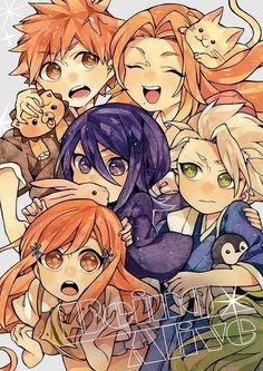 Anime + Manga : Bleach Characters Shown : Ichigo Kurosaki, Rukia Kuchiki, Orihime Inoue, Captain Toshiro Hitsugaya and Lieutenant Rangiku Masumoto (I may have spelled the names wrong or got the wrong character)