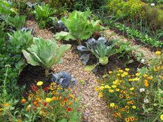 Über das Thema Düngen entfachen zwischen Gartenbesitzern immer wieder hitzige Diskussionen. Die einen schwören auf chemischen Mineraldünger aus dem Handel, die anderen verfechten ausschließlich natürliche Düngemittel. Aus ökologischen Gesichtspunkten bietet ein biologischer Dünger viele Vorteile für den Boden und die Pflanzen. Daher ist es immer gut, mit alternativen Düngemitteln zu arbeiten. Wir zeigen Ihnen, welche